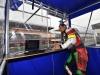 0020-2014 24h Le Mans 00288